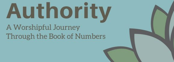 The Book of Numbers: Day 22
