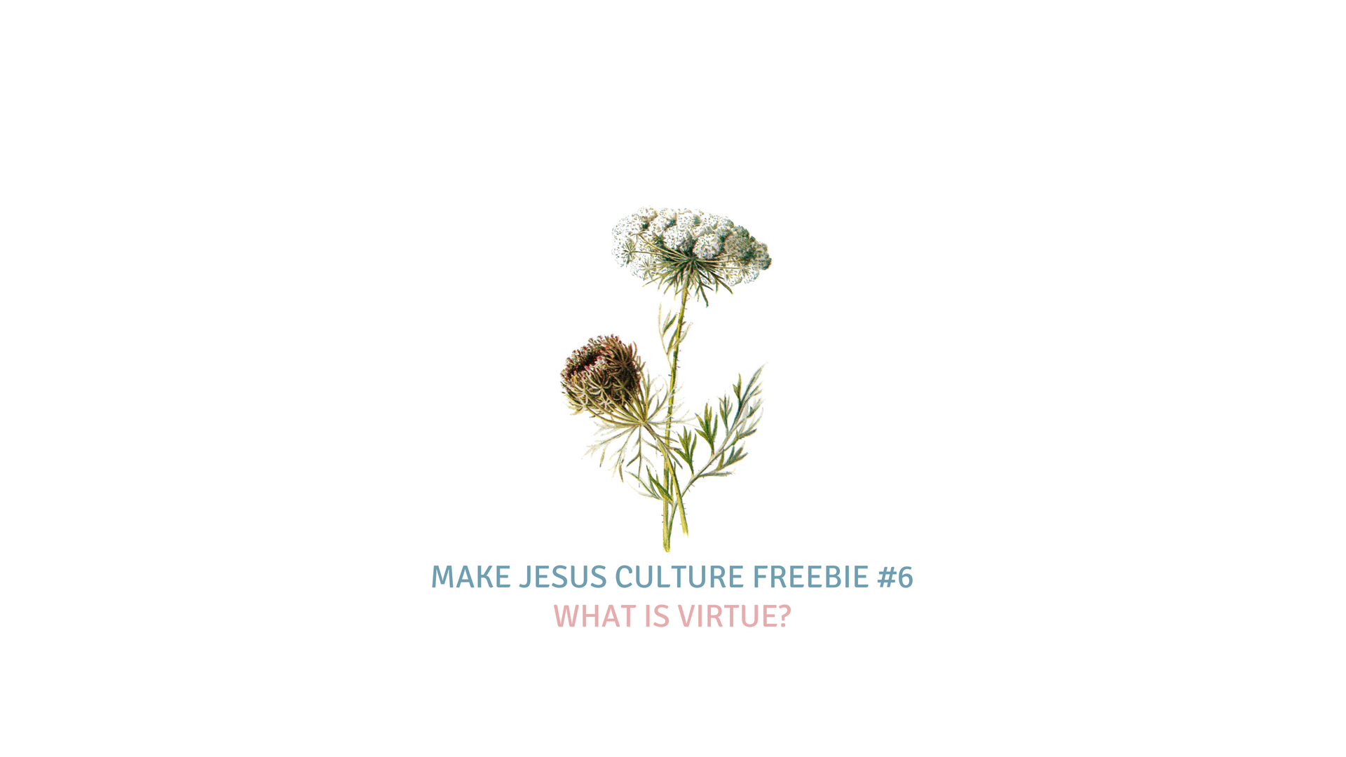 freebie 6 dr kevin brown what is virtue worship ministry catalyst