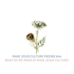 Freebie #44-Lancelot Schaubert: What do we mean by Make Jesus Culture?