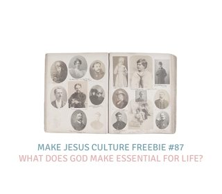 Freebie # 87-Dave Yauk: What Does God Make Essential for Life?