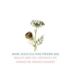 Freebie #28-Dr. Jim Hart: Beauty and the Virtuous Life Cannot Be Argued Against