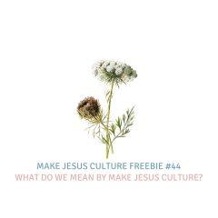 Freebie #44-Lancelot Schaubert: What do we mean by Make Jesus Culture?