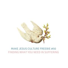 Freebie #50-Gerard Long: Finding What You Need In Suffering